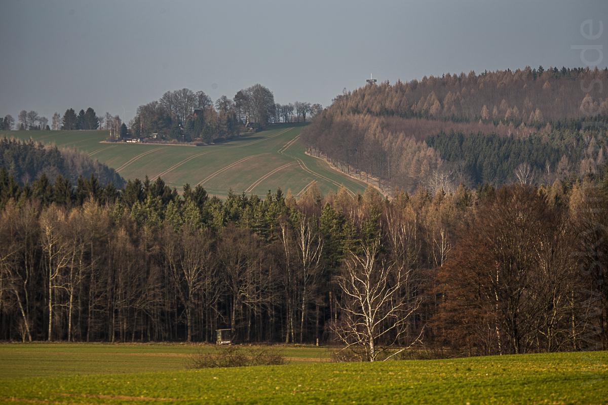 Blick vom Oelsnitzer Steig zur Alberthöhe