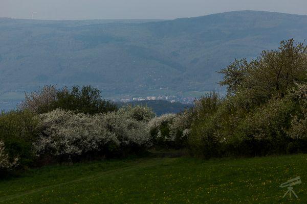 Blick über Aussig zum Erzgebirge