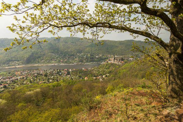 Blick zur Burg Schreckenstein
